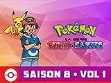 Pokémon, la série : Rubis et Saphir