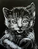 WASO de Hobby–4scrapy kratz imágenes Set–Gato Diseños/plata * grande *