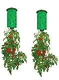 Allstar Innovations Topsy Turvy Upside-Down Tomato Planter