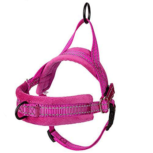 AUTOWT No Pull Small Dog Harness and Leash, Heavy Duty Easy for Walk Vest Harness Soft Padded Reflective Pet Lead Quick Fit for Small Dog Cat Animal (XX-Small, Fuchsia)
