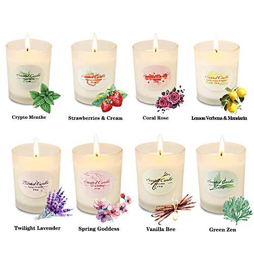 Lucky Meet Geurende Kaarsen Aromatherapie voor Vrouwen Glazen Potje Kaars Set Natuurlijke Soja Wax Geur Essentiële Oliën Xmas Stress Relief Ontspanning Verjaardagscadeau