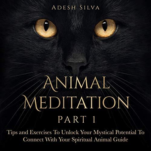 Animal Meditation Part One cover art