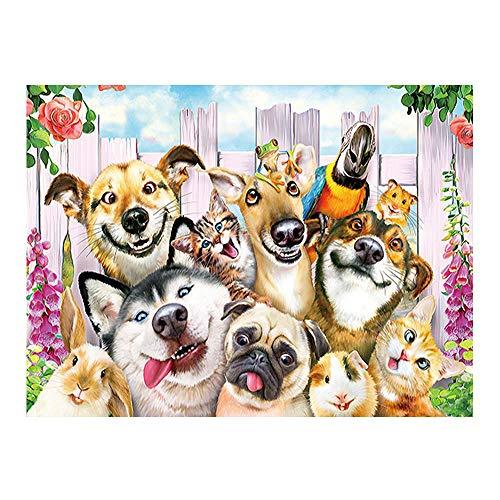 YSNMM Grimassa hond diamant schilderij dier cartoon kinderen ronde volboormachine 5D DIY mozaïek borduurwerk kruissteek decor geschenk
