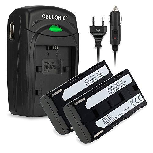 subtel 2X Batería Compatible con Canon XF100 XL1 XH-A1 XM2 XL2 XM1 XL1S XF105 XL-H1 XH-G1 E-30 V60Hi MV1 V420, Phase One P25 P45 P65, BP-915,BP-930,BP-945 2200mAh + Cargador bateria Repuesto Pila
