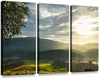 Sunrays Shine on Patchwork Sonoma Vineyard and Mountains at sunsetPrint On Canvas Wall Artwork Modern Photography Home Decor Unique Pattern Stretched and Framed 3 Piece