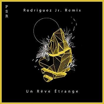 Un Rêve Étrange Remix