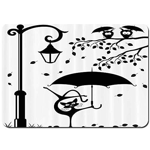 YANAIX Alfombra de Baño,Gracioso Gatito con Paraguas Bailando bajo la Linterna de...