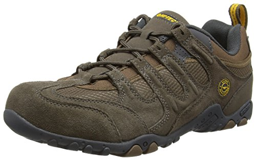 Hi-Tec Quadra Classic, Zapatillas de Senderismo para Hombre, Marrón (Smokey Brown/Taupe/Gold), 43 EU
