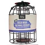 Eichhörnchen-proof Bird Feeder - Best Reviews Guide