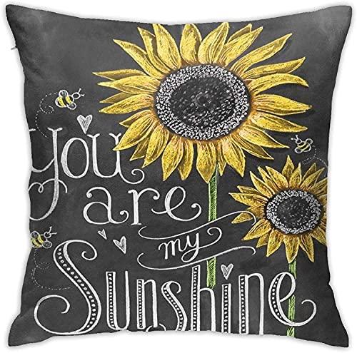 962 Fundas de almohada para sofá, decoración del hogar, You are My Sunshine - Funda de cojín para habitación, dormitorio, sofá, 45,7 x 45,7 cm