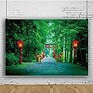 Qinunipoto 箱根神社へのアプローチ 杉の森 多くの赤いランタンが点灯 背景布 写真撮影用 背景 撮影 ポリエステル 洗濯可 背景 背景幕 撮影布 和風 大きな赤い鳥居 緑の背景 商品撮影 人物撮影 2.1x1.5m