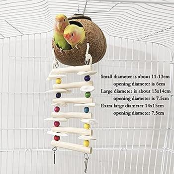 ZHANGJINYISHOP2016 Hut nid d'oiseau de Noix de Coco avec échelle pour perruches perruches - Petites Animaux domestiques habitats de Cage d'animaux de Compagnie (Size : Small)