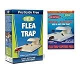 10. BioCare 11 Indoor Electric Flea Trap with Lightbulb and a Bonus Pack of 3, White