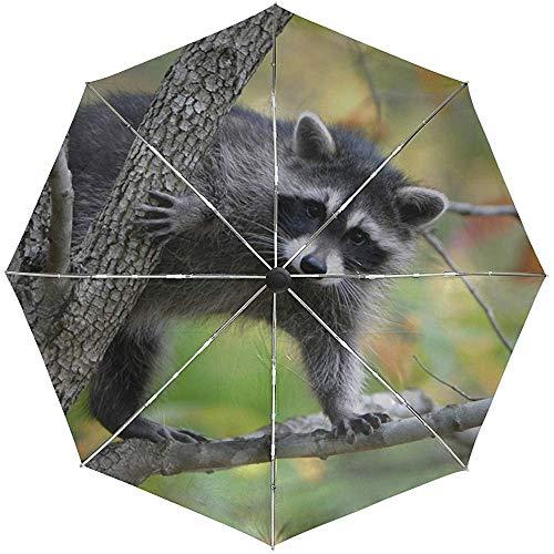 Automatischer Regenschirm-Waschbär verzweigt Sich die Bäume, die Tierreise bequem Klettern Winddichtes wasserdichtes faltendes Auto öffnen Sich nah