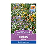 Rockery Mixture Seeds