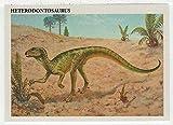 Heterodontosaurus - Dinosaurs: The Mesozoic Era (Trading Card) # 31 - Redstone Marketing 1993 Mint