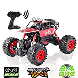 LBLA Off-Road Rock Crawler 1:16 Scale Alloy Body RC Monster Truck with Rechargeable