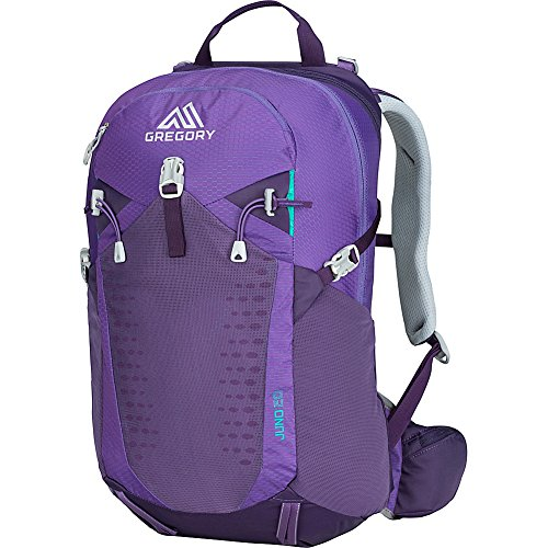 Gregory Mountain Products Juno 20 Liter 3D-Hydro Women's Daypack, Acai Purple, One Size