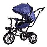 WENJIE Triciclo,Triciclo Evolutivo Triciclos for Niños Triciclos Niños 2 Años Bebé 4 En 1 Trike for Niños con Capota Extraíble Y Plegable Verde Azul Marrón Oscuro Gris (Color : Blue)