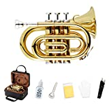 Best Brass Trumpets - EastRock Pocket Trumpet Bb Gold Lacquer with Standard Review