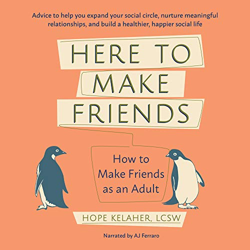 Here to Make Friends cover art