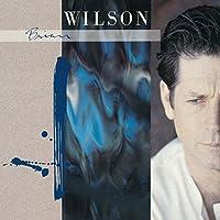 Brian Wilson by Brian Wilson