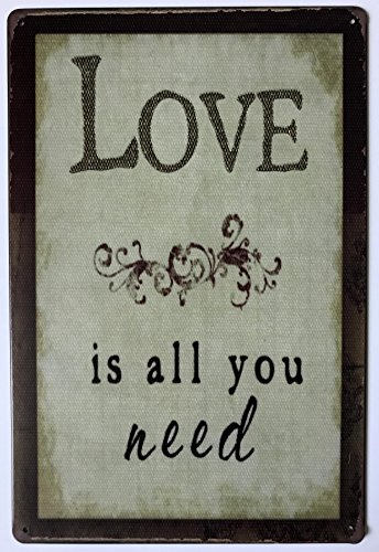 Love Is all you need 30x20 cm Vintage Retro Metal Sign