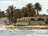 Tunesien: Das Klima an der Macht
