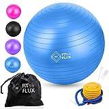 FitFlux Pelota de Pilates 65cm, Set Balón con Bomba de Inflado 100% de PVC. Pelota para Ejercicio, Yoga, Embarazo, Resistente y Antirreventones. | Azul, Purpura, Rosa y Negro |