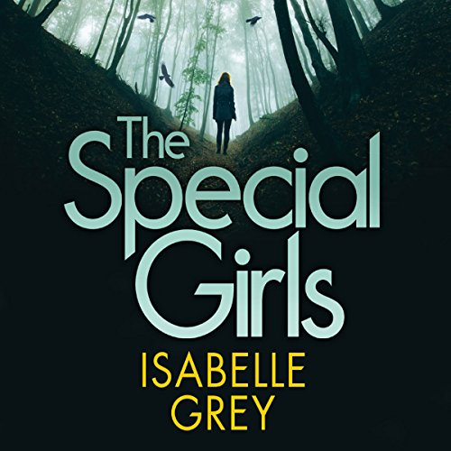 The Special Girls audiobook cover art