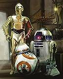 Star Wars Laminiert Erwachen der Macht Poster Droiden