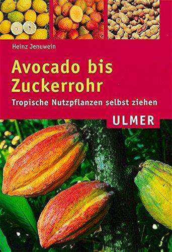 Avocado bis Zuckerrohr: Tropische Nutzpflanzen selbst ziehen (Ulmer Taschenbücher)