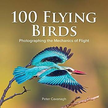 100 Flying Birds  Photographing the Mechanics of Flight