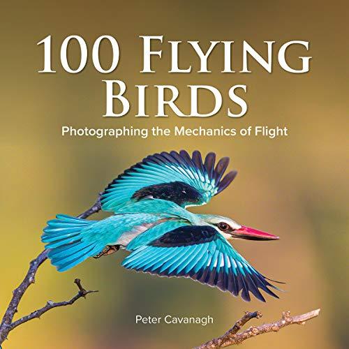 100 Flying Birds: Photographing the Mechanics of Flight