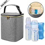 Best Baby Bottle Coolers - Teamoy Breastmilk Cooler Bag, Baby Bottles Bag Review