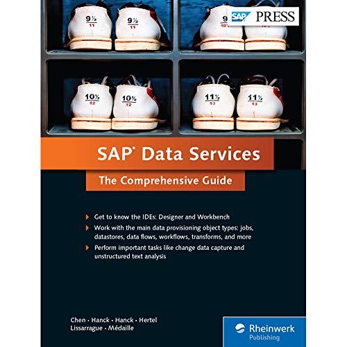 SAP Data Services: The Comprehensive Guide (SAP PRESS: englisch)