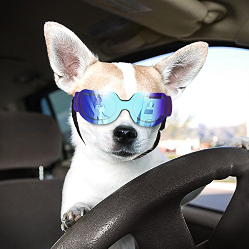 Namsan Dog Sunglasses Doggie Goggles for Small Dogs Puppy Goggles for Eye Protection, Bright Blue