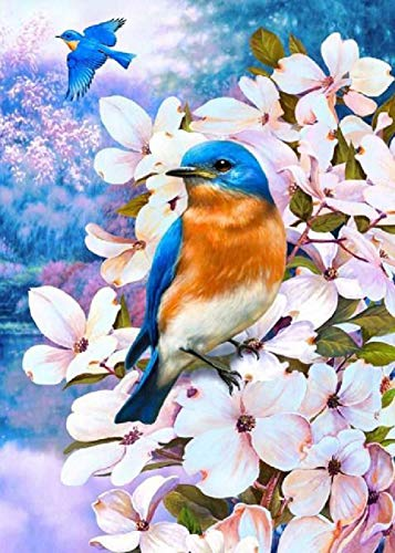 DIY 5D Diamond Painting by Number Kits Easy Diamond Art Multi Coloured Magpie Full Drill Rhinestone Embroidery Cross Stitch Pictures Arts Craft for Home Wall Decor 30 x 40 cm