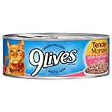 9 Lives Tender Morsels With Real Salmon In Sauce Wet Cat Food Can, 5.5 Ounce, 24 Count