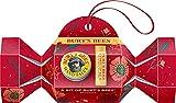 A Bit of Burt's Bees Christmas Cracker de Burt's Bees, bálsamo labial y bálsamo de manos de cera de abejas original