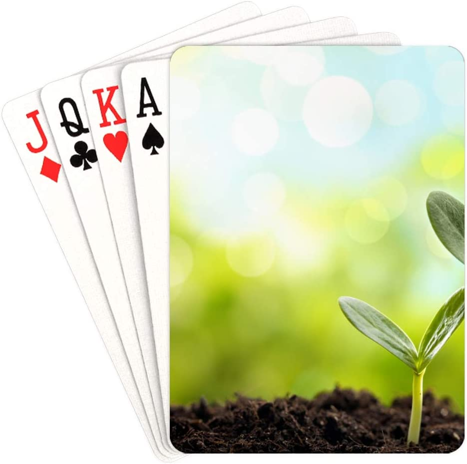 WUTMVING Special price Max 81% OFF Colored Playing Cards Seed Standard Soil from Rich Grow