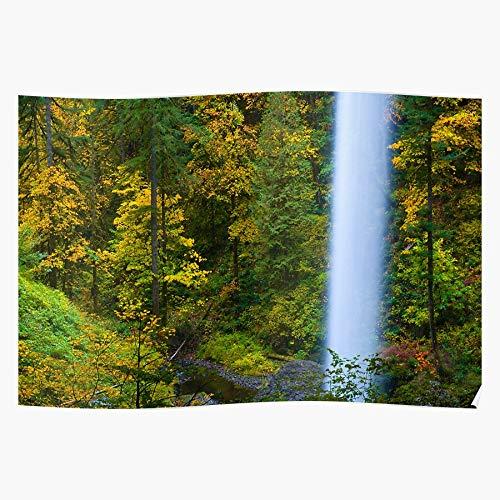 Northwest Silver Falls Fall Autumn Foliage Color North Oregon Pacific Regalo para la decoración del hogar Wall Art Print Poster 11.7 x 16.5 inch
