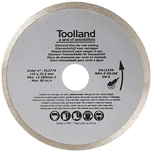 Grille /à Poncer 225 Scratch Lot de 25 Unit/és Disques Abrasifs Grain 100 /Ø 225 mm Adapt/é pour Ponceuse de Plafond Ponceuse /à Sec et Ponceuse /à Disque