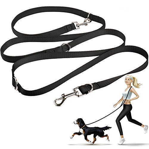 oneisall Hands Free Dog Leash,Multifunctional Dog Training Leads,8ft Nylon Double Leash for Puppy,Small & Large Dogs