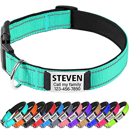 TagME Reflective Padded Personalized Dog Collars for Large and Extra Large Dogs,Custom Engraved Slide On Dog ID Tags,Stainless Steel Silent Nameplate,Teal L