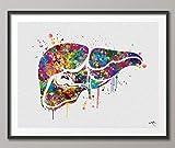 Anatomia del fegato Stampa Acquerello Organi Umani Gastroenterologia Clinica Decor Fegato Poster Art Graduaiton Regalo medico Arte Scienza Art Gift-1030