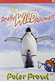 Really Wild Animals: Polar Prowl (National Geographic)