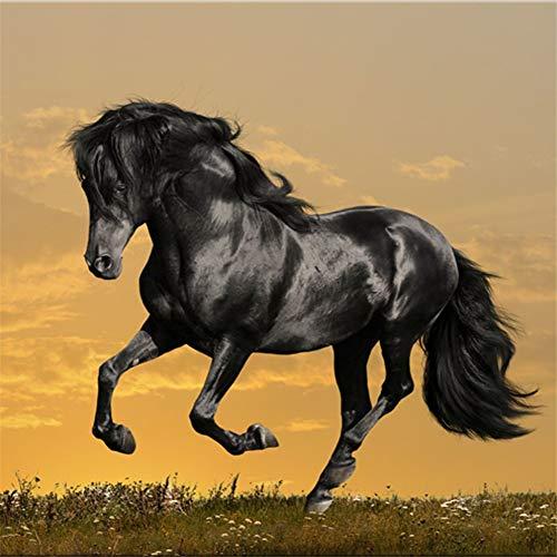 Pintura Diamante 5D DIY Grand taladro completo Black Horse Running 60x180cm Cristal Rhinestone Diamond Painting Large Full Drill Adultos Niños Bordado Punto de Cruz Art Craft Home Salón Decor de Pared
