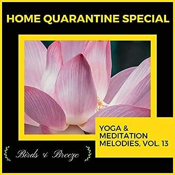 Home Quarantine Special - Yoga & Meditation Melodies, Vol. 13