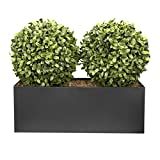 GreenBrokers ABBT-1525-02 Artificial Topiary Aglaia Boxwood in Black tin Planter 35cm, Double Ball Straight